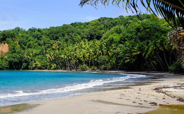 Batibou Beach auf DominicaQuelle: Batibou Beach, Dominica von Matthias Ripp (CC BY 2.0)