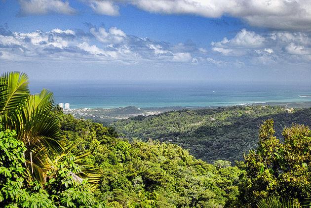 Ausblick vom El Yunque National Park in Puerto RicoQuelle: Puerto Rico Vista von Trish Hartmann (CC BY 2.0)